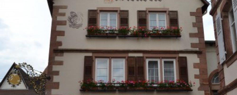 L'Hostellerie du Cygne à Wissembourg : La passion du local et des saisons